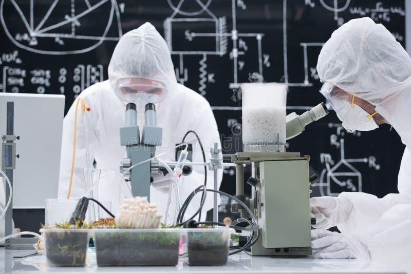 Análise química do laboratório imagens de stock