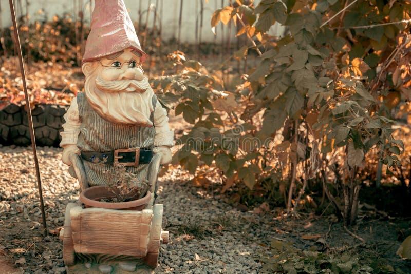 Anão bonito do jardim na luz do sol Conceito do outono imagens de stock