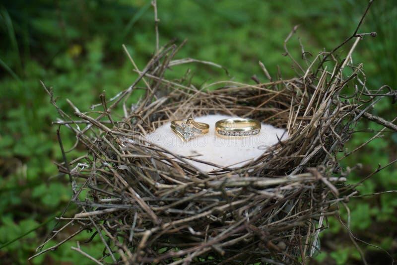 Anéis da união fotografia de stock royalty free