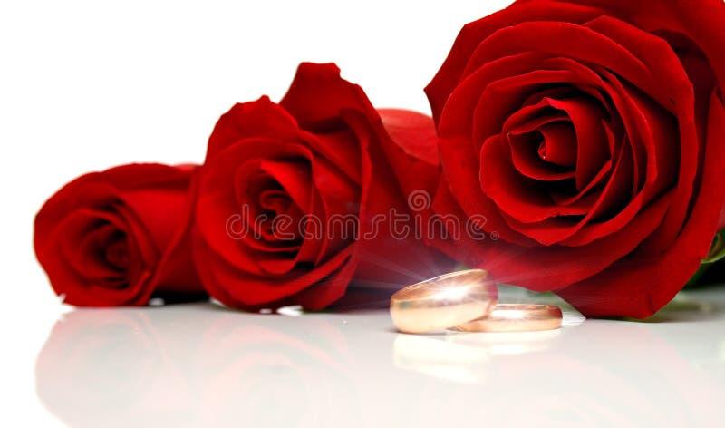 Anéis de casamento 2 imagem de stock royalty free