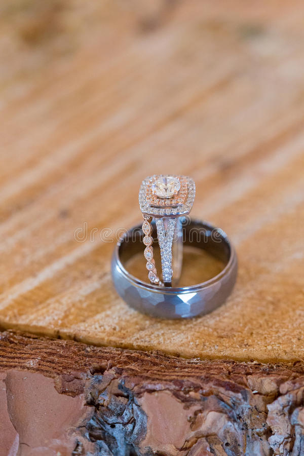 Anéis de casamento da noiva e do noivo imagens de stock royalty free