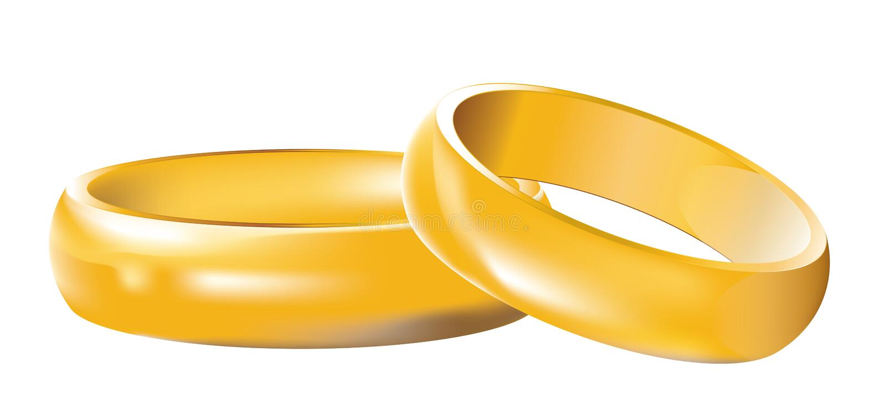 Anéis de casamento das faixas de casamento ilustração do vetor