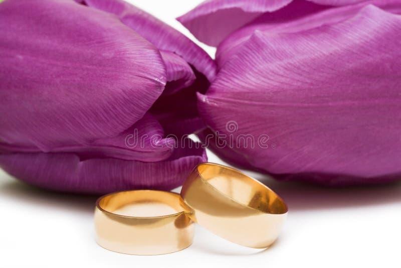 Anéis de casamento dourado fotografia de stock royalty free