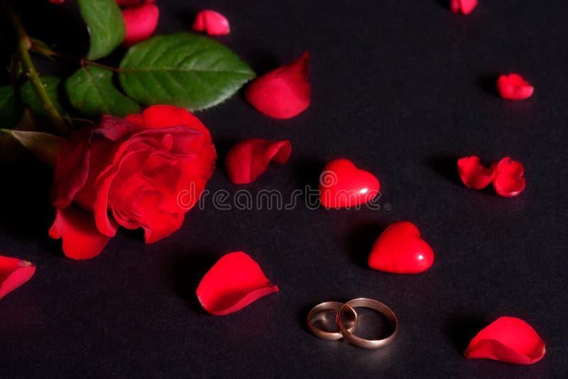 Anéis de casamento e pétalas cor-de-rosa fotos de stock
