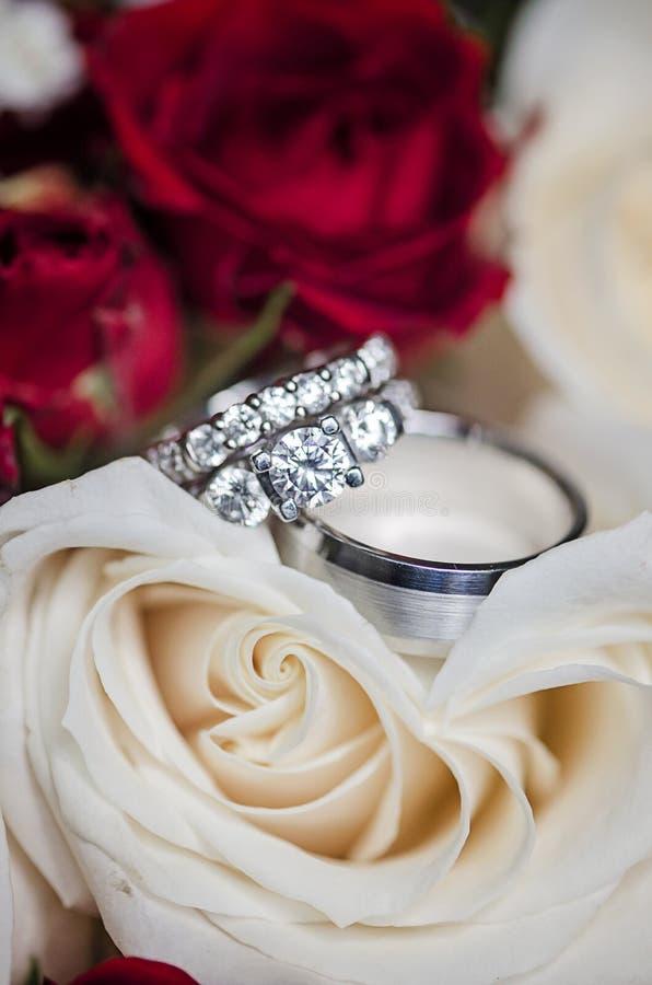 Anéis de casamento nas rosas fotografia de stock royalty free