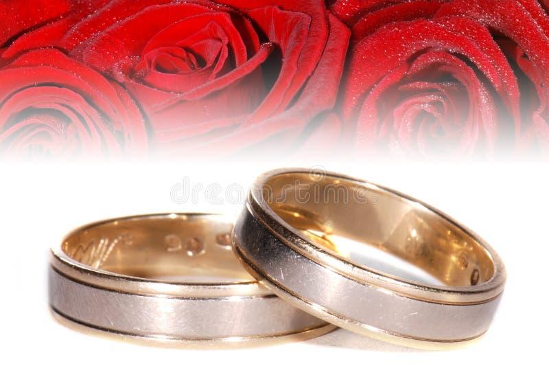 Anéis de casamento no fundo flowery fotos de stock