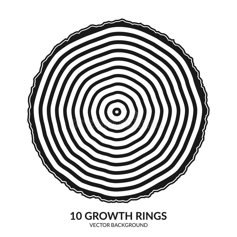 10 anéis de crescimento Anéis de árvore e tronco de árvore do corte da serra ilustração stock