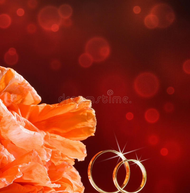 Anéis e flores de casamento do ouro foto de stock royalty free