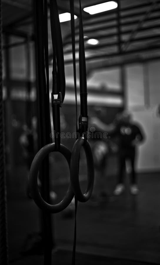 Anéis em um gym do crossfit imagens de stock royalty free