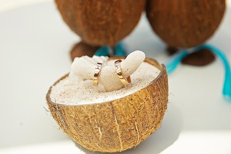 Anéis no coral nos cocos na areia imagens de stock