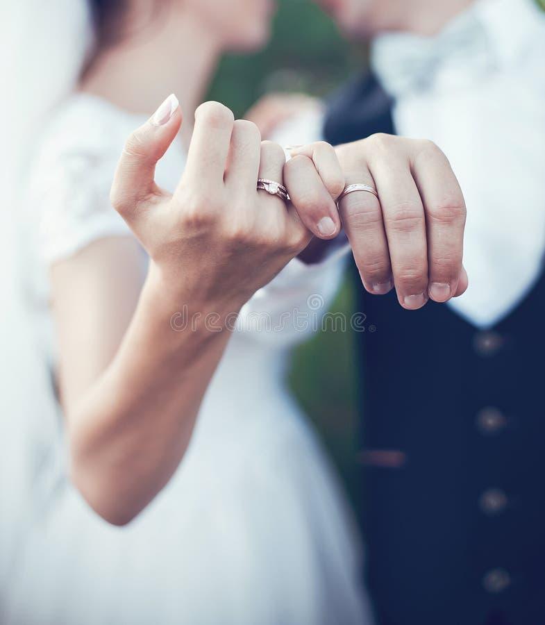 anéis para o casamento imagem de stock
