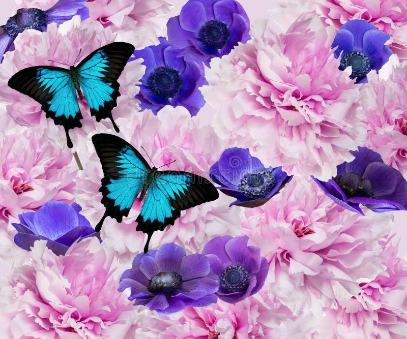 Anémonas y flores de la peonía ilustración del vector