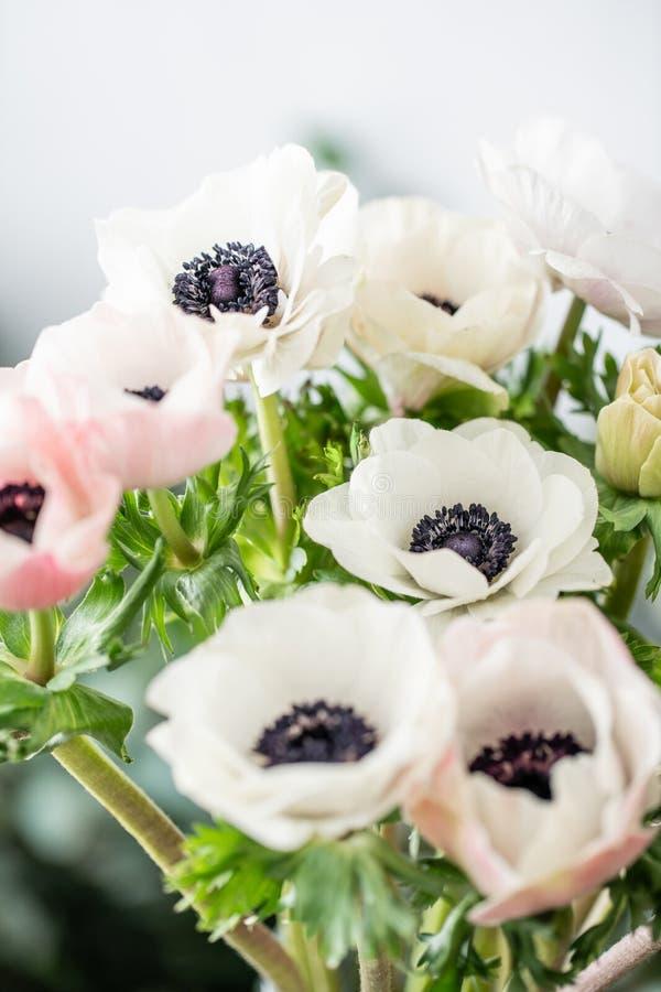 Anêmonas do rosa e as brancas no vaso de vidro Cor pastel do grupo o conceito de um florista em um florista wallpaper imagem de stock royalty free