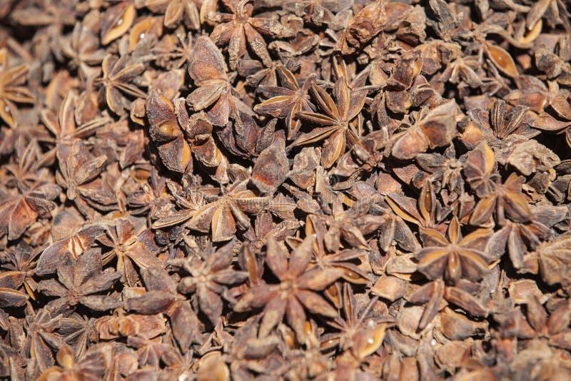 Anís de estrella seco imagen de archivo libre de regalías