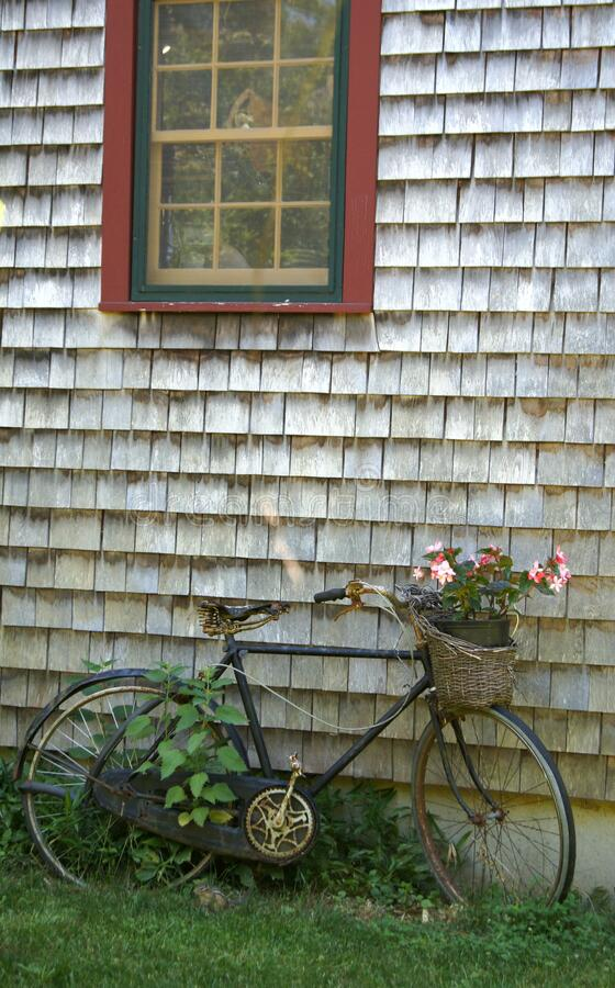 Free An Old Bicycle Used As A Flower Planter Leans Against A Natural Shingled Building With A Red Green And Yellow Window Royalty Free Stock Image - 177230556