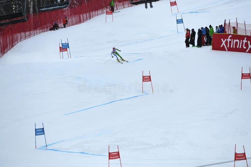 Ana Drev of Slovakia competes in the first run of the Giant Slalom. KILLINGTON, VERMONT - NOVEMBER 24: Ana Drev of Slovakia competes in the first run of the royalty free stock photos