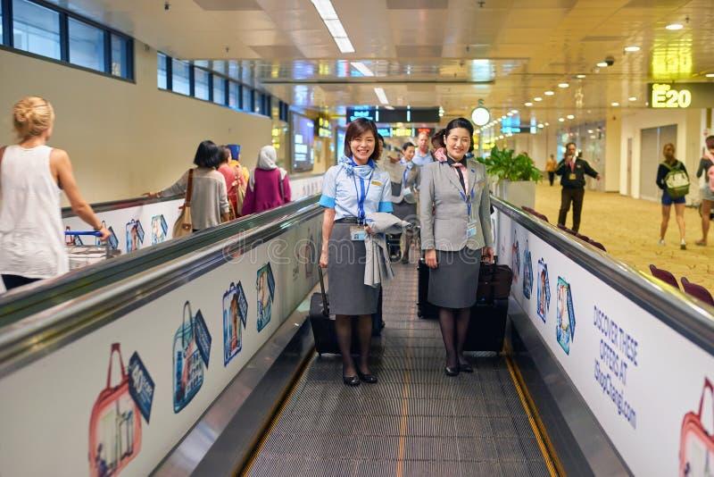 ANA-Kabinenmannschaft stockfotos