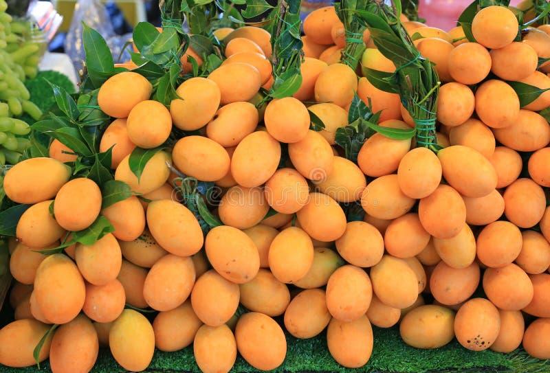 Anacardiaceae o Plum Mango, frutta tropicale della Tailandia immagini stock libere da diritti