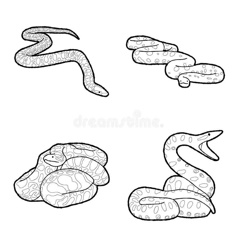 Anaconda Vector Illustration Hand Drawn Animal Cartoon Art royalty free illustration