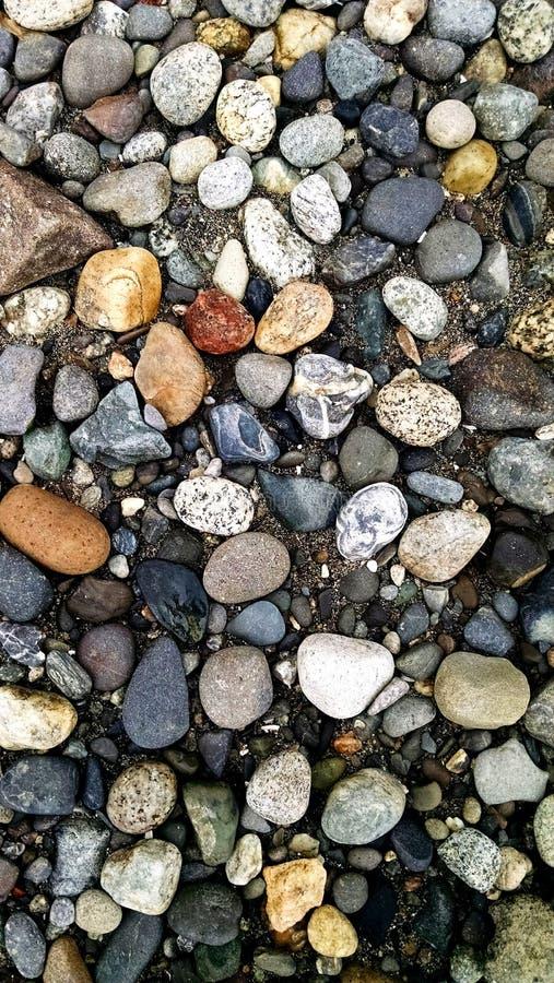 Anacortes-Strand stockbilder