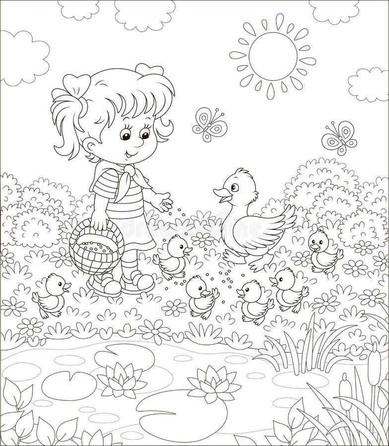 Anadones de alimentación de la muchacha por una charca libre illustration