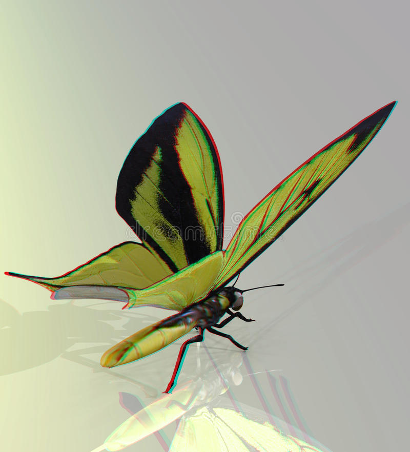 This is an anaglyph image / stereo rendering of a. Beautiful butterfly. The 3d effect however is only visible with red-cyan-specs (red/blue-googles vector illustration