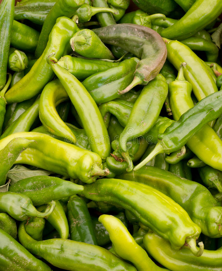 Anaheim chili peppers on display royalty free stock image