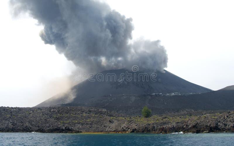 Anak ausbrechendes Krakatau stockbild