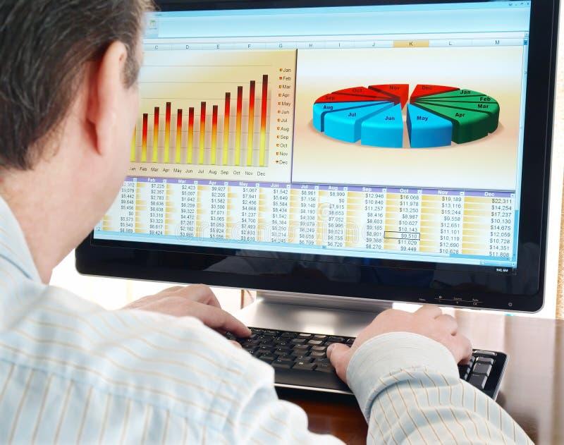 Analisando dados no computador. imagem de stock royalty free