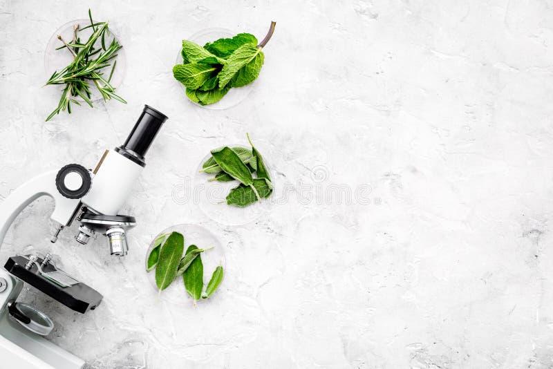 Analisi alimentare Gli antiparassitari liberano le verdure Erbe rosmarini, menta vicino al microscopio sullo spazio grigio della  immagini stock