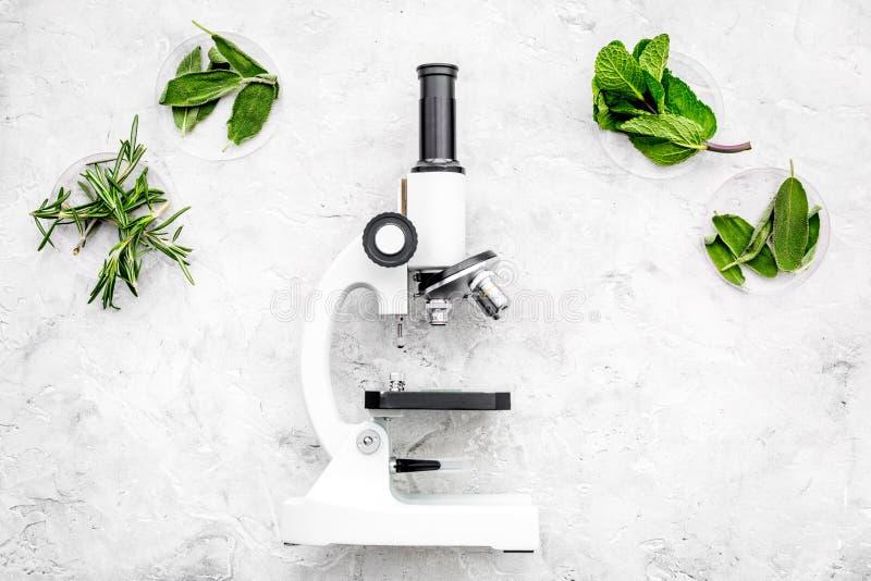 Analisi alimentare Gli antiparassitari liberano le verdure Erbe rosmarini, menta vicino al microscopio sullo spazio grigio della  immagine stock