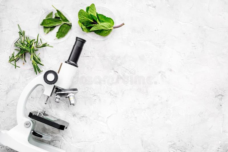 Analisi alimentare Gli antiparassitari liberano le verdure Erbe rosmarini, menta vicino al microscopio sullo spazio grigio della  fotografia stock