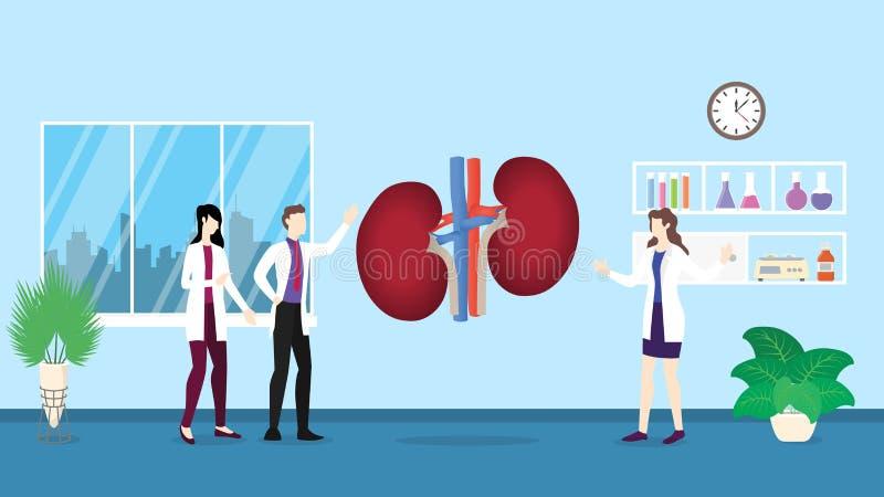 Analisi umana di controllo di sanità della struttura di anatomia dei reni che identifica dalla gente di medico sull'ospedale - illustrazione vettoriale