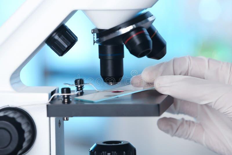 Analista que faz a análise laboratorial com microscópio imagens de stock