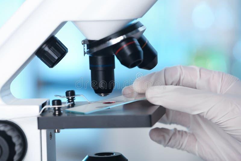 Analista que faz a análise laboratorial com microscópio fotos de stock royalty free