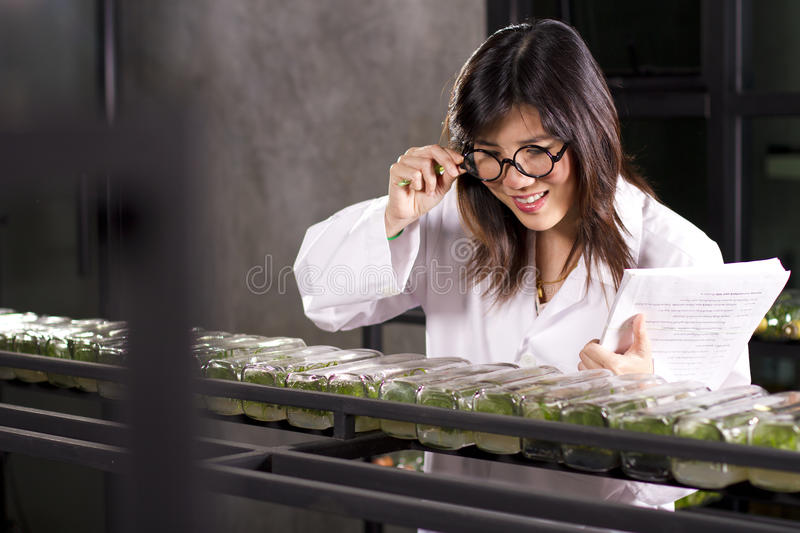 Download Analyse bottle plant stock image. Image of liquid, biology - 22754849