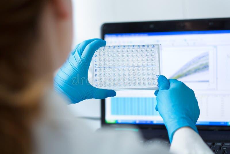 Analysering av en mikroplatta royaltyfri foto
