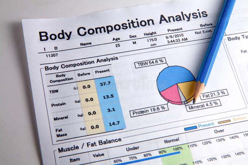 Analysis of body composition royalty free stock images