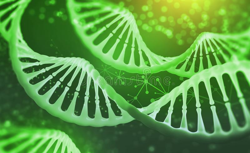 Analysis of structure human genome. DNA research molecule. 3D illustration. Analysis of structure human genome royalty free illustration