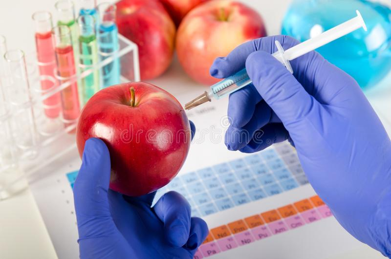 Analyst injects liquid into apple. Genetically modified food concept. Analyst injects liquid into apple. Genetically modified food in lab concept stock photos