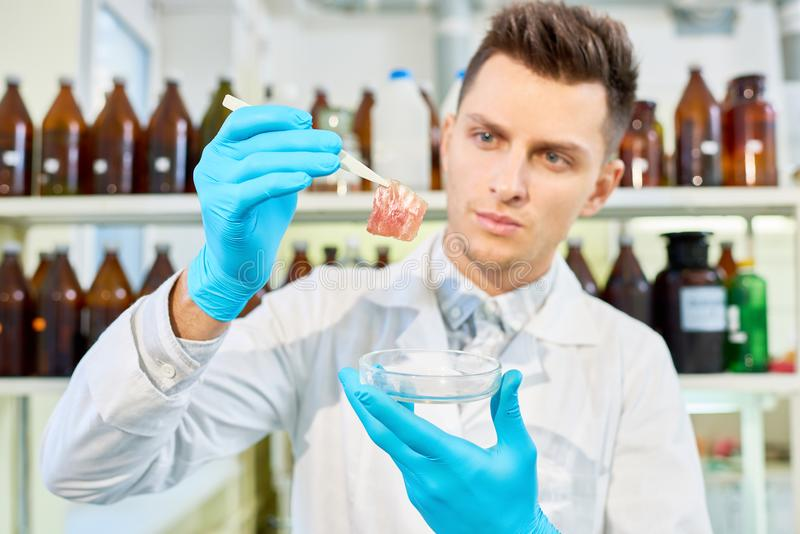Analyzing Results of Ambitious Scientific Project stock photo