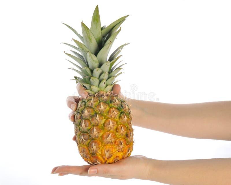 Download Ananas obraz stock. Obraz złożonej z kuchnia, składnik - 13342093