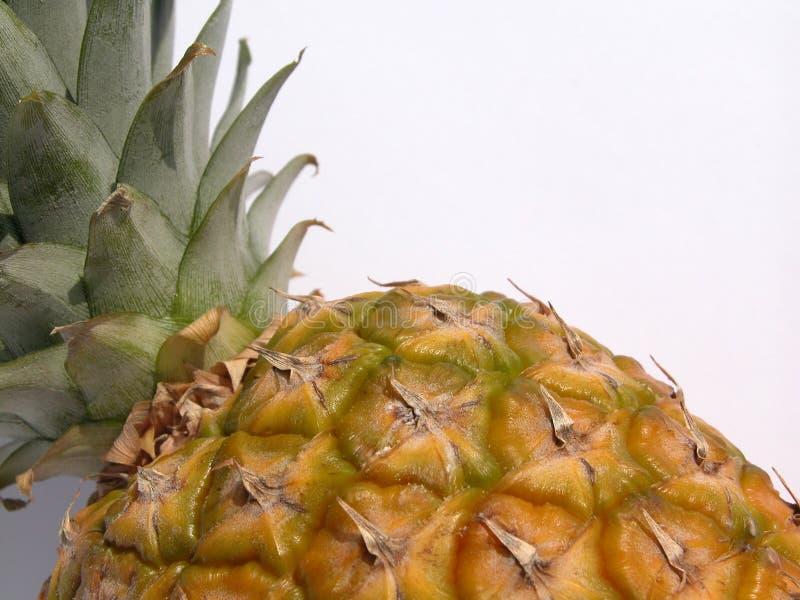 Ananas royalty-vrije stock afbeelding