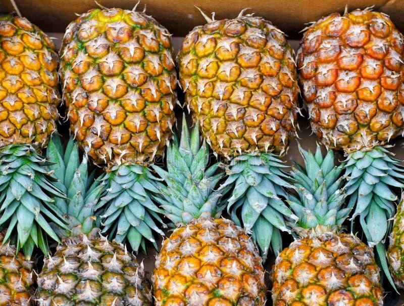 Download Ananas arkivfoto. Bild av marknad, moget, frukter, nytt - 19777302