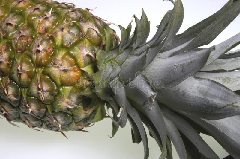 Download Ananas fotografia stock. Immagine di tropicale, calorie - 217394