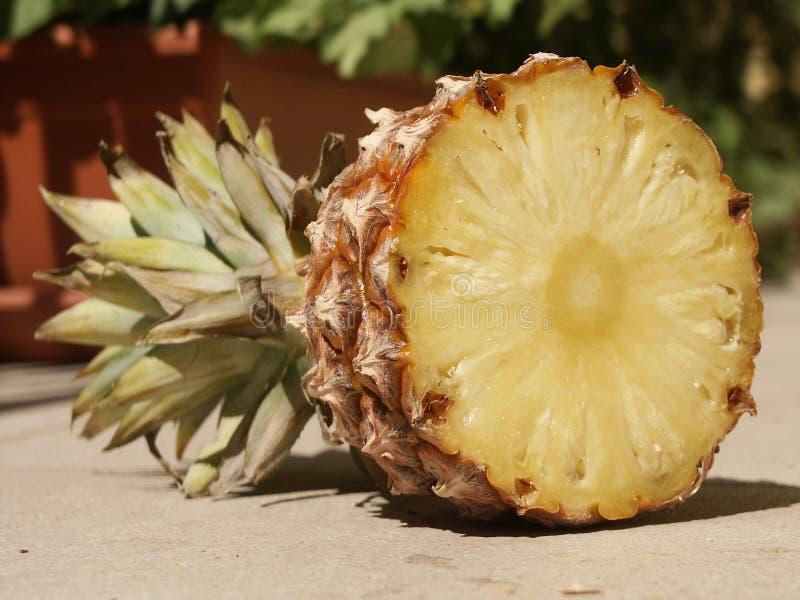 Download Ananas fotografering för bildbyråer. Bild av sött, snitt - 31041