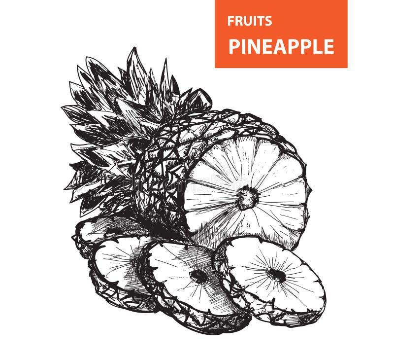 Ananas ilustracji