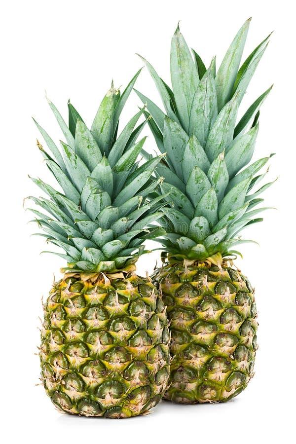 Ananas photographie stock libre de droits