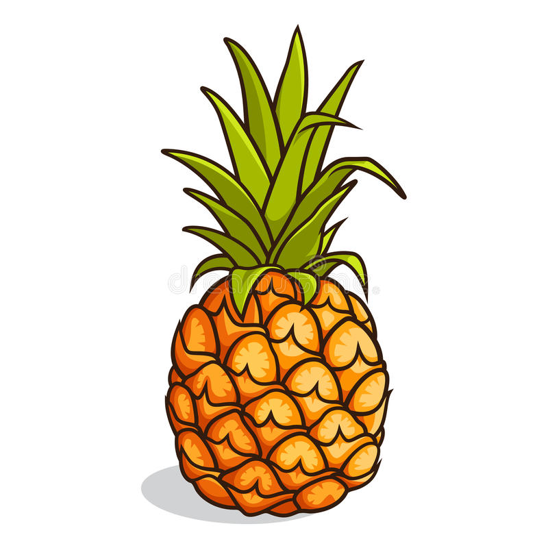ananas vektor abbildung illustration von tropisch  frucht hawaiian clip art fonts hawaiian clip art black and white