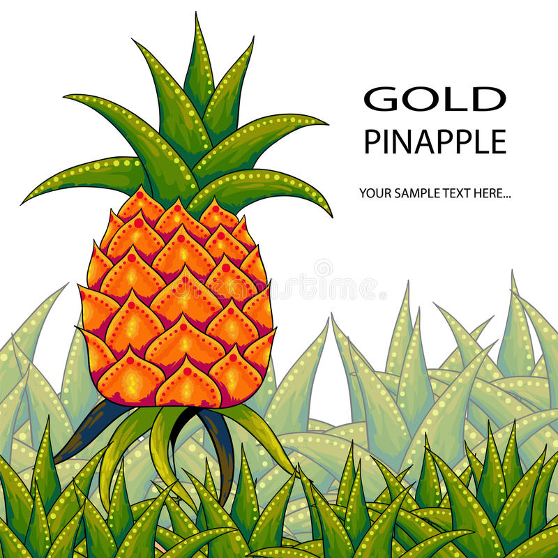 Ananas stock illustratie